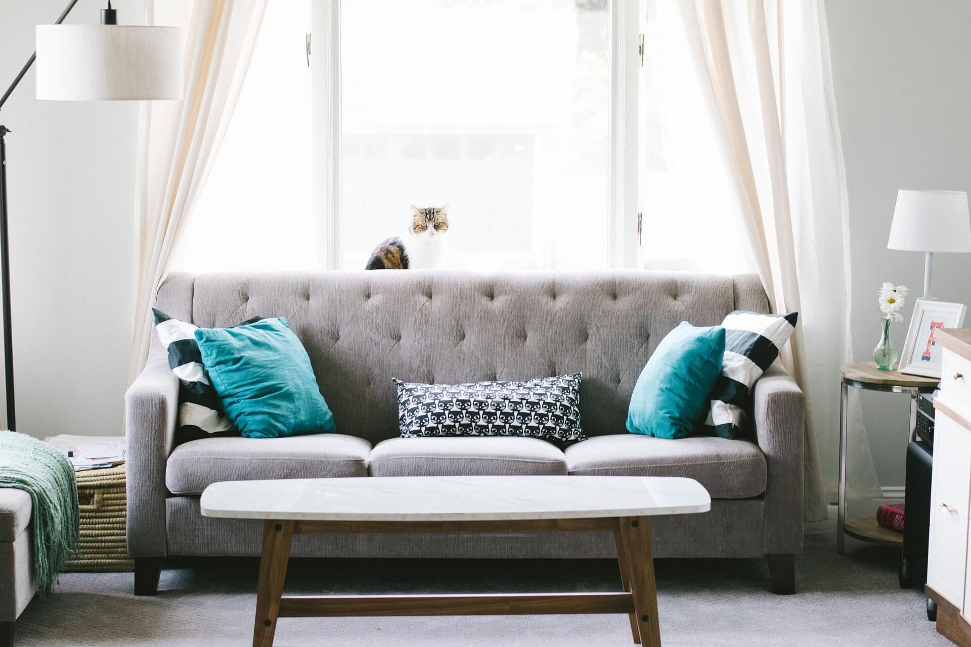 Kleur in je huiskamer